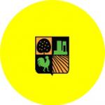 אבן יהודה צהובה